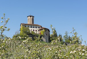 Trenino dei castelli speciale bambini, Castel Valer