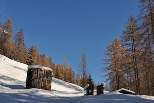trentino-val-di-fiemme-latemar-foresta-dei-draghi-inverno2